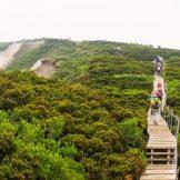 日本の国立公園の山の魅力③「大山」