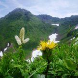 春夏秋冬山便り-「鳥海山」(2018年7月)