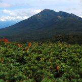 日本の国立公園の山の魅力⑤「岩手山」