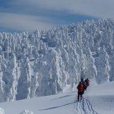 日本の国立公園の山の魅力⑦「八甲田山」