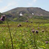 日本の国立公園の山の魅力⑨「大雪山」