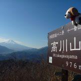 春夏秋冬山便り-「冬の高川山」(2018年12月)