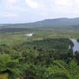 日本の国立公園の山の魅力⑪「西表島」