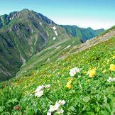 日本の国立公園の山の魅力⑫「北岳」